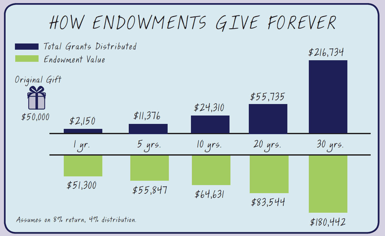 Example to how endowments give forever.
